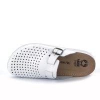 Muška papuča